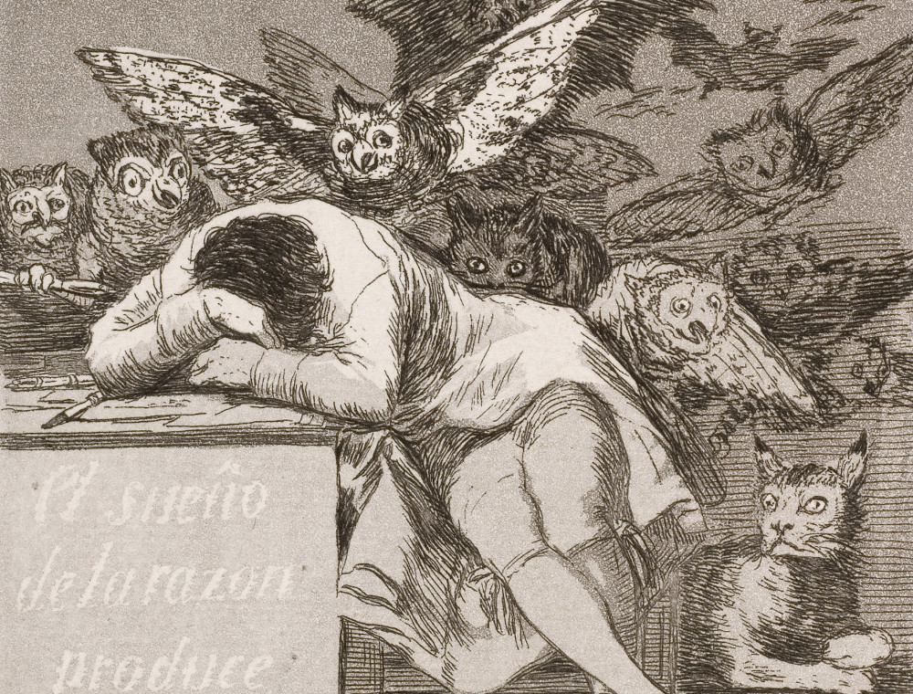 Detail of Goya's Sleep of Reason Produces Monsters etching